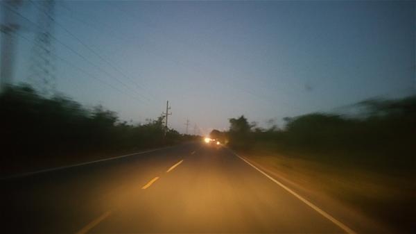 Choferes Denuncian Animales Deambulan Por Carretera Consuelo-San Pedro