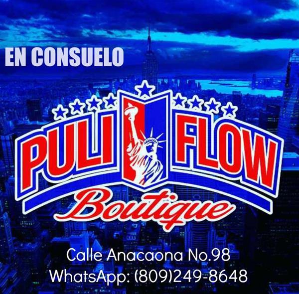 Puli Flow.jpg