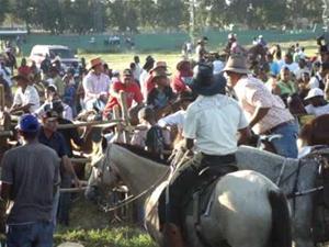 Realizaran Rodeo Por Fiestas Patronales
