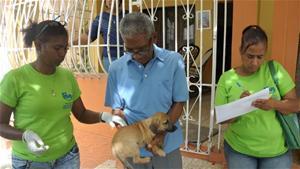 Salud Pública Inicia Jornada Nacional De Vacunación De Perros Y Gatos