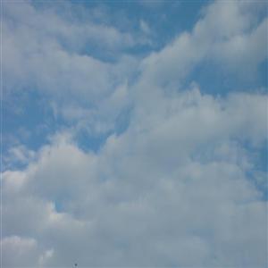 Pronostican Pocas Lluvias Y Temperaturas Calurosas